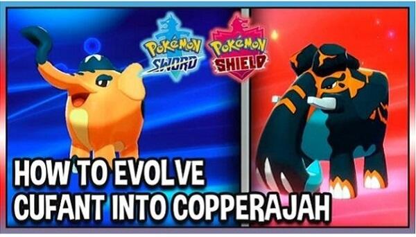 evolve Copperajah