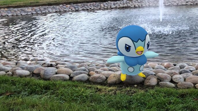 where find shiny piplup