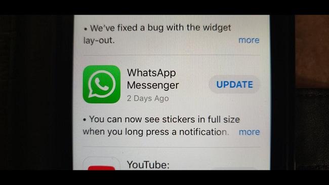 update option whatsapp