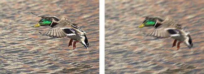 blur-image-in-video-avs