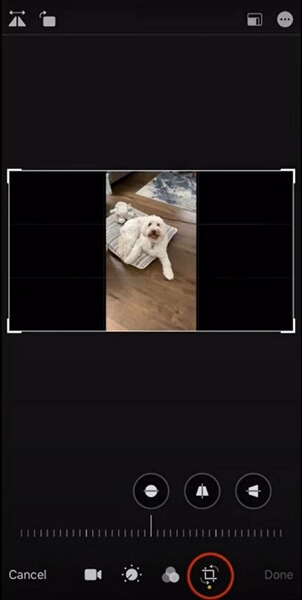 crop video into the horizontal video