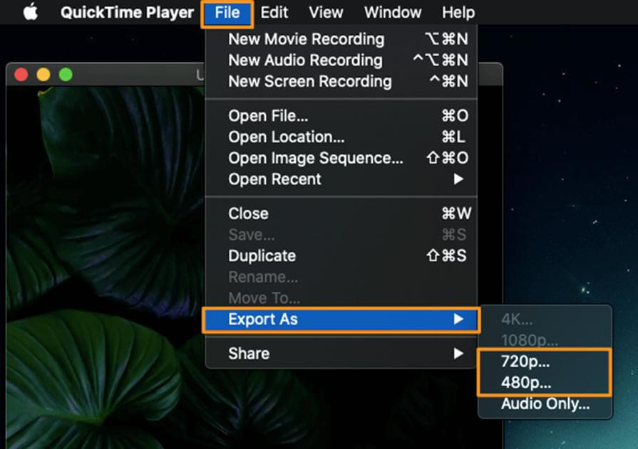 extract-audio-from-mac-with-Quicktime-export