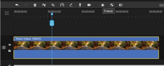 filme freeze frame tool