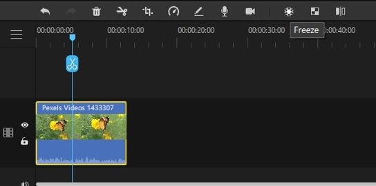 filme select frame