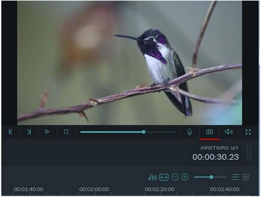 filmora snapshot
