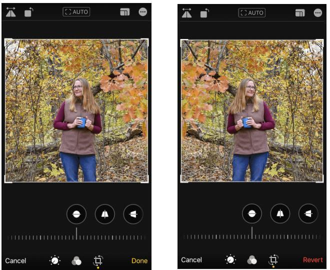 how to flip image in iphone