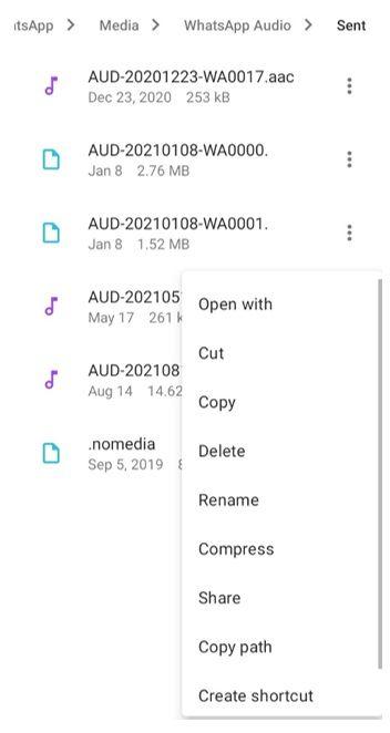 material files copy