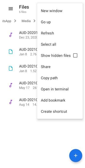 material files show hidden files