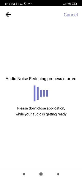 noise reducer audio removal process