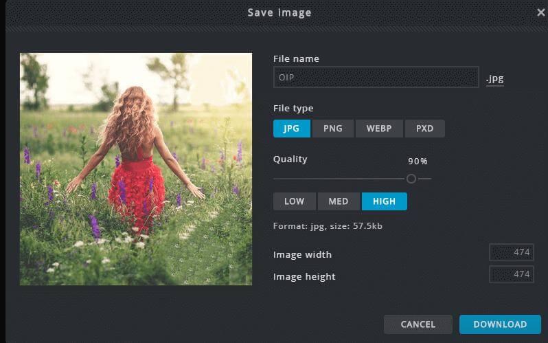pixlr photo setting