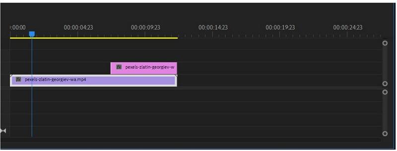 premiere pro exported frame on timeline