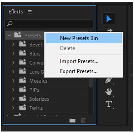 premiere pro new preset bin