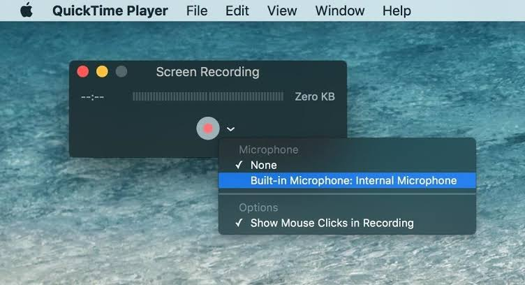 quick time screen recording
