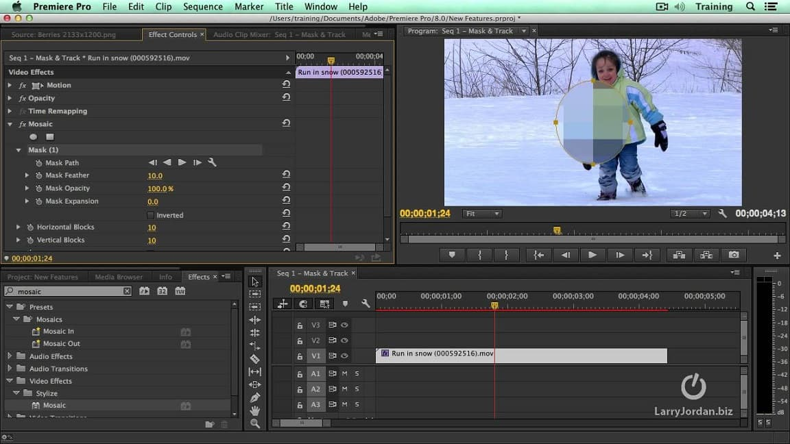 remove-watermark-adobe-premiere-with-masking