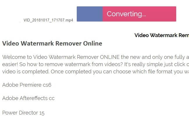 video-watermark-remover-online