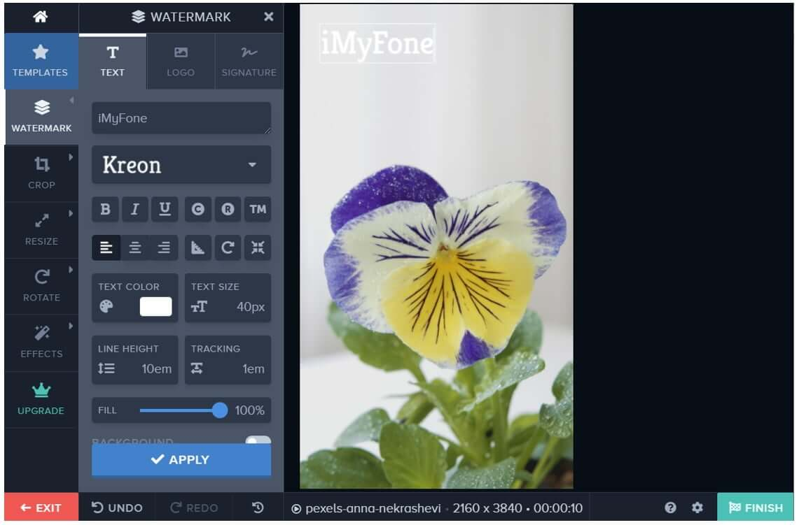 watermark-online-tool-add-text