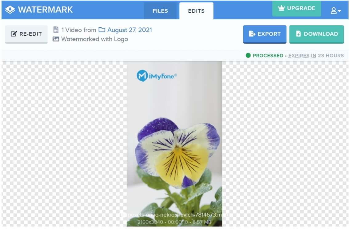 watermark-online-tool-download-file