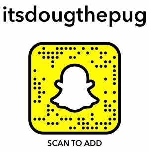 doug snapcode