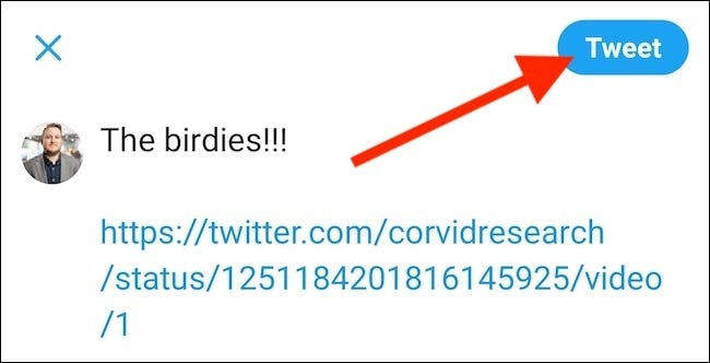 embed twitter video link rewrite