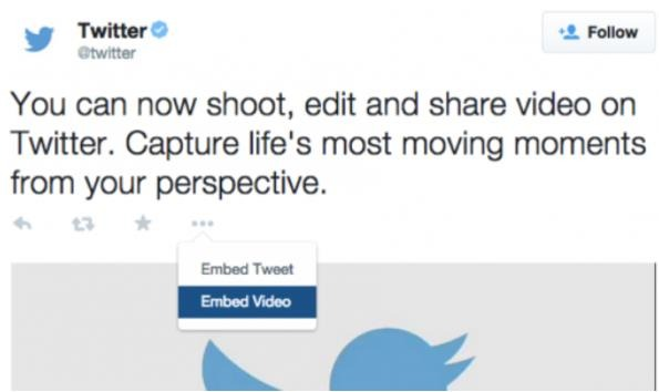embed twitter video option