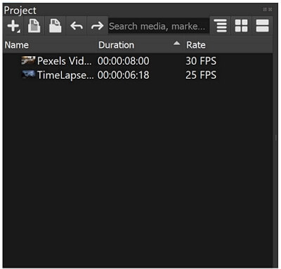 olive video editor project panel