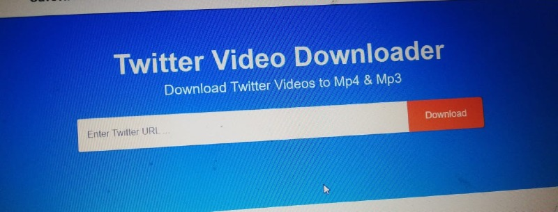 paste the link in the twitter video downloader