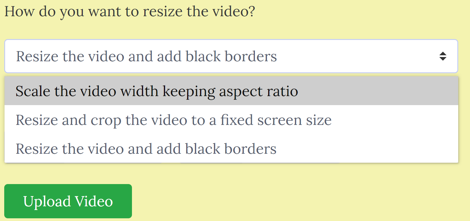 resize video resize scale
