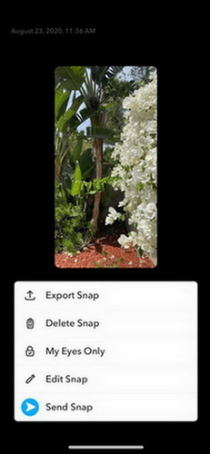 save snapchat videos option your video