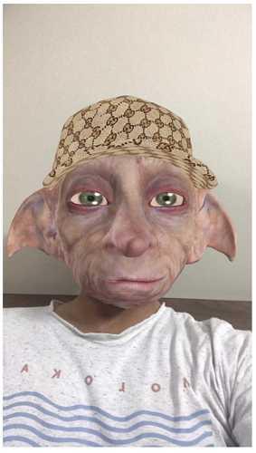 snapchat dobby head filter
