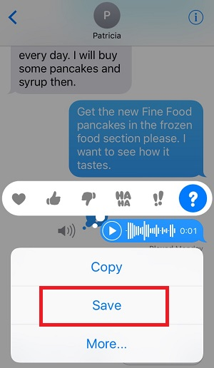 Save the Audio Message on iphone