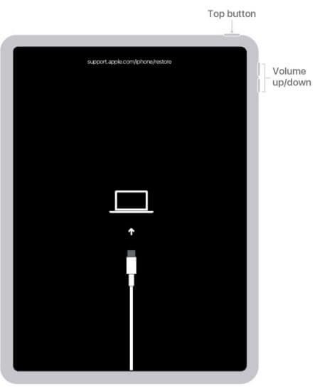mettre l'ipad mini en mode récupération