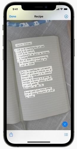 Texto en Vivo iOS 15