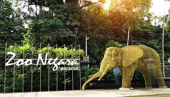 Zoológico Negara