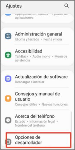 opciones de desarrollador