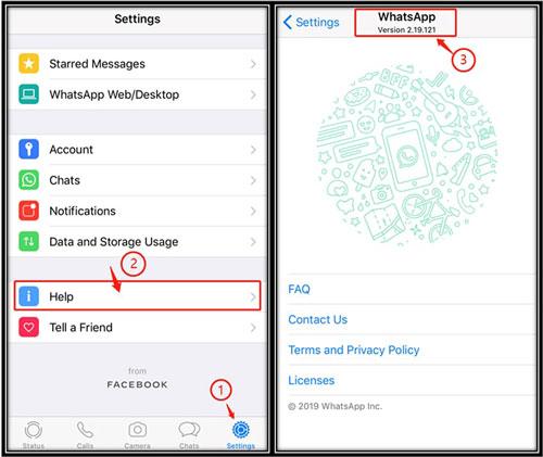 comprobar la versión de WhatsApp del iPhone