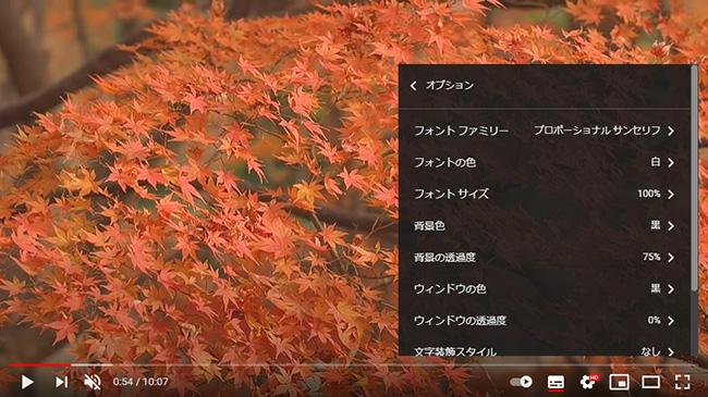 YouTube字幕のオプション