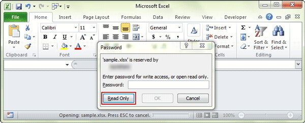 open read only excel file