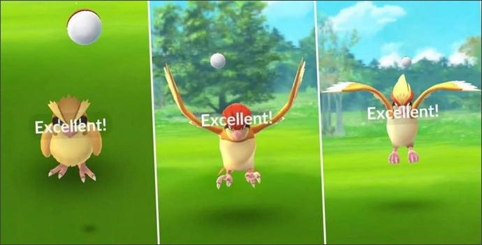 投擲3個excellent球