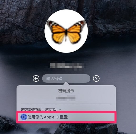 使用你的Apple ID